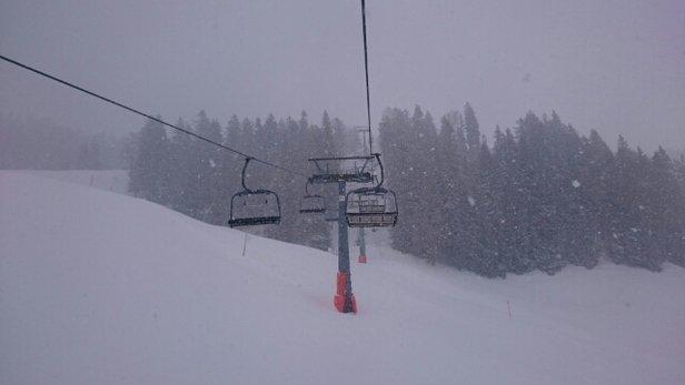 Reit im Winkl - Winklmoosalm - Idag har det snöat hela dagen och även en hel del tidigare i veckan.  Kanon lössnö åkning.  - © patrik.jaenecke