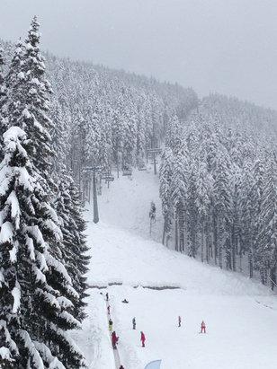 Bansko - Great day , powder is fantastic - © iPhone