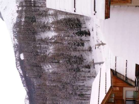 Les Orres - vue de la résidence bois menant orres 1800 neige est au rdv - © abricote1972