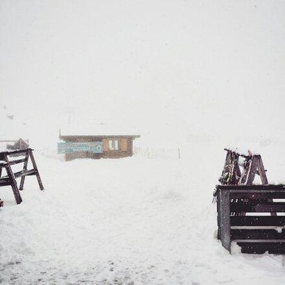 San Martino di Castrozza - Passo Rolle - oggi tanta neve...bellissimo - © cinziafrm