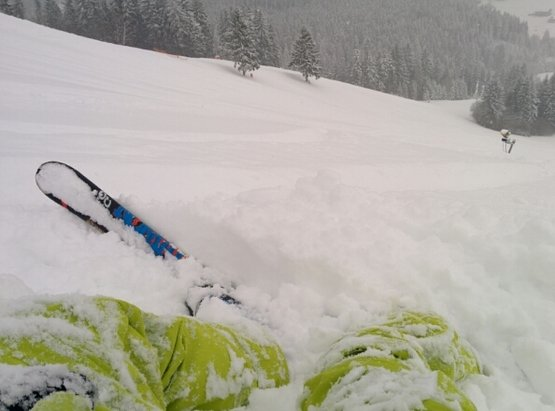 Vrátna - Powder everywhere today. 20cm on piste, 30cm off piste. - © Peter