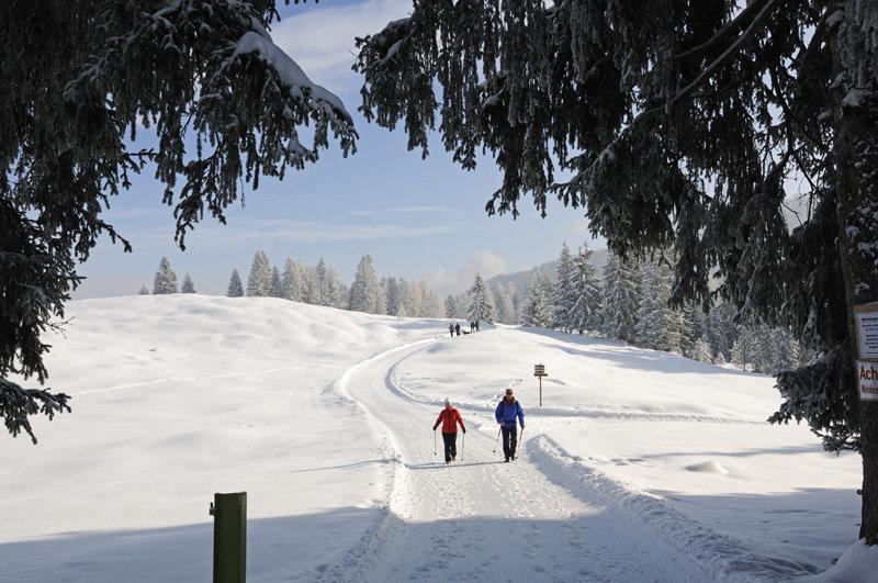 Winterwanderparadies in Reit am Winkl auf dem ersten Premium Winterwanderweg Deutschlands - © Norbert Eisele-Hein