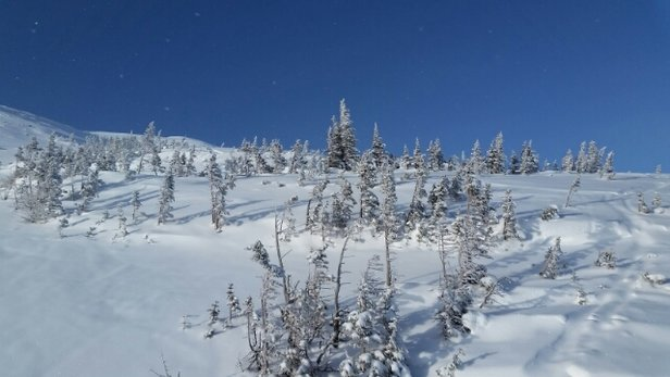 Castle Mountain - Amazing day at Castle!  Powder everywhere! - © kmac.pei