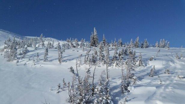 Castle Mountain - Amazing day at Castle!  Powder everywhere! - © kmac.pei