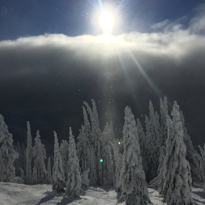 Silver Star - Fabulous day in Silverstar!! - © Rachel