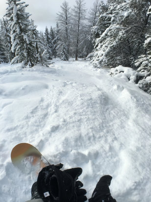Panorama Mountain - Great snow if you looked for it! Otherwise main groomed runs were relatively icy and popular ungroomed had large moguls.  - © Biker227