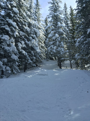 Ski Santa Fe - Some powder left in the trees!