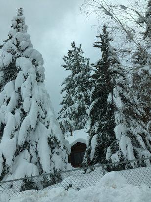 Bear Mountain - Fantastic snow coverage!  - © Gordon's Iphone