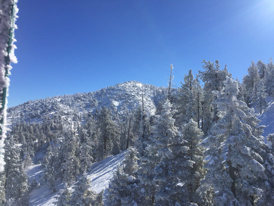 Bear Mountain - Epic blue bird day. Lots of fresh pow still to be had in the canyons. Not that super dry pow pow but I'll take it!  - © Cameron 's iPhone