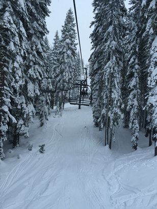 Boreal Mountain Resort - Great powder   - © iPhone