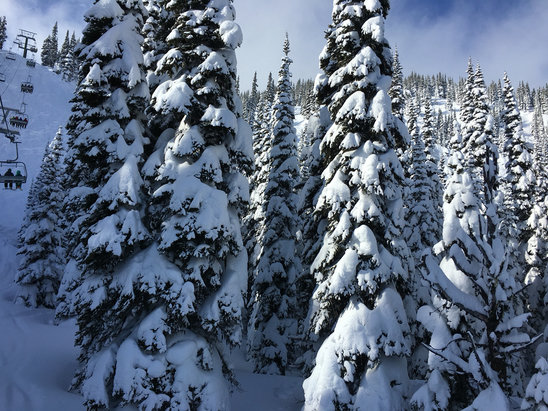 Crystal Mountain - [! skireport_firsthandpost_pagetitle ] - © tons of powder up top.