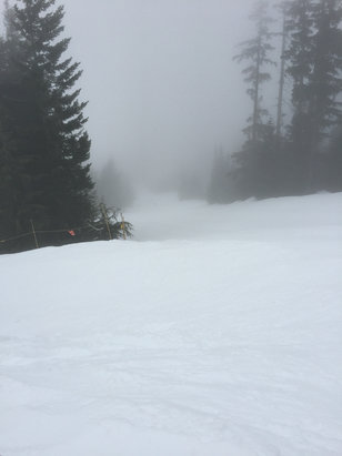 Cypress Mountain - Not the best visibility today,but the snow is good so far. Eagle express chair had an unforeseen malfunction and is temporary closed.  - © Dano iPhone