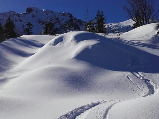 Les Monts d'Olmes - un régal  . ..  - © francisarcens