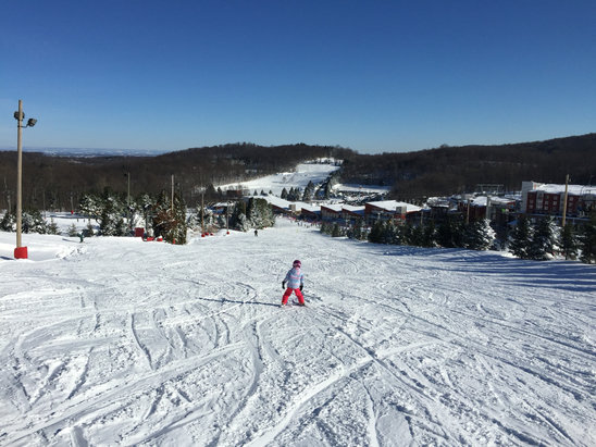 Bear Creek Mountain Resort - Day after Jonas. Machine groomed and amazing  - © BadBoy