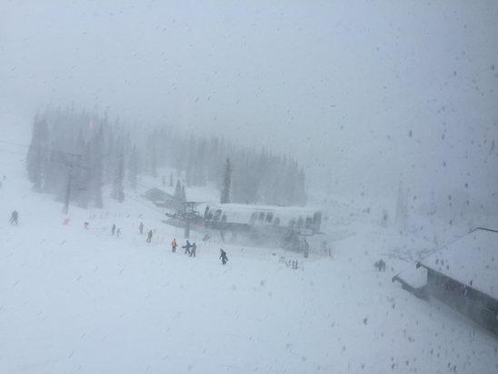 Wolf Creek Ski Area - Wow Wow POW POW.....epic year, get up and take advantage...!!!! - © tj's iPhone