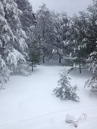 Winterplace Ski Resort - Really nice conditions a few days ago - © Phone