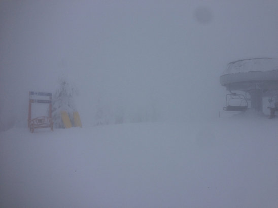 Big White - Fogged in! It's been snowing all evening, looking forward to fresh powder!