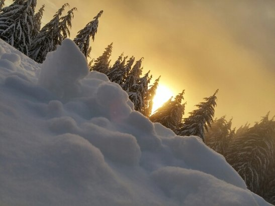 Grouse Mountain - it was so beautiful  - © jepingcanada