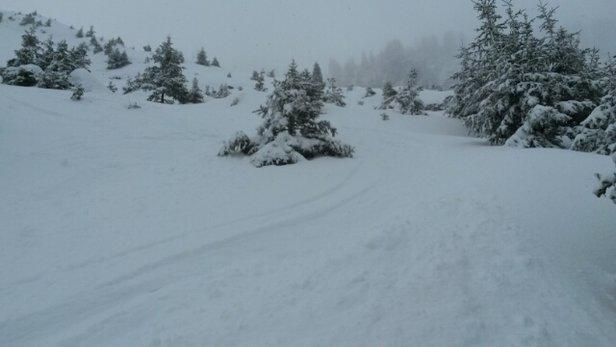 La Clusaz - neige fraîche, 20cm mais brouillard persistant - © camille.josse1
