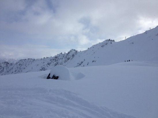 Kicking Horse - Powder on whitewall, champagne snowflakes falling on stairway to heaven  - © Joshua's iPhone