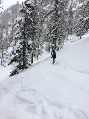 Montgenèvre - Perfect conditions - more than half a meter of powder in the woods!!