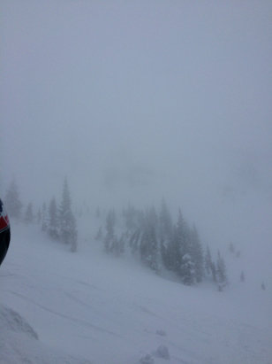 Grand Targhee Resort - This was the view from beneath reliable which is a run off Sacajawea. The snow was dust on crust as it snowed 2 inches. It was a fun day, but the snow was bad and so was visibility. 