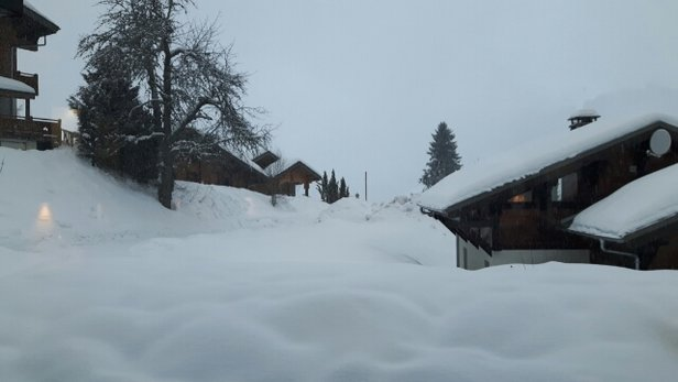 Les Gets - New snow for our last day - © simonpyle72