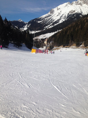 - © iPhone 5C Georgia