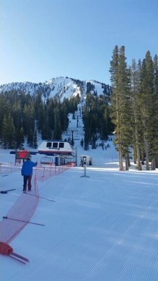 Mt. Rose - Ski Tahoe - 8:40 am sun,no wind,some unskied snow around,Das chutes day