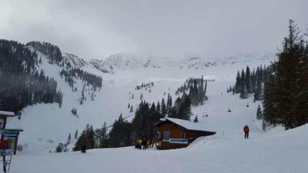 Fernie Alpine - pow day !! - © danvdub337