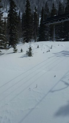 Taos Ski Valley - Taos! World class! Smooth runs all day! - © bentpocket