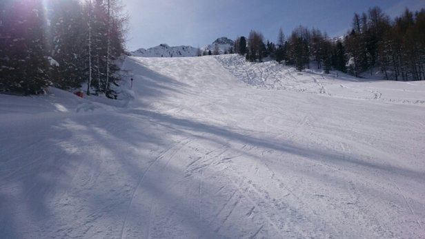 Alpe Lusia - San Pellegrino - Great snow conditions for most of today. Snow only started getting a bit heavy later in the afternoon, but only on middle and lower slopes.  - © spikeymikey25