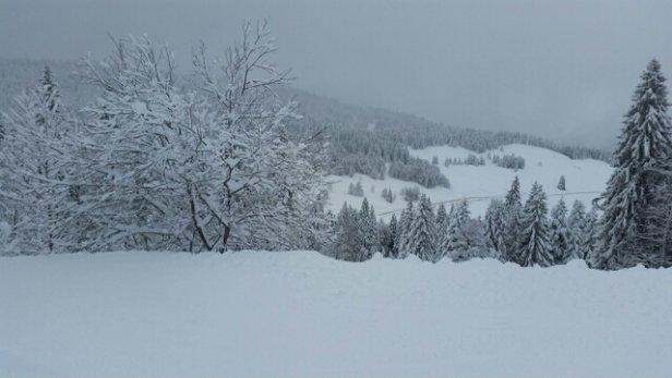 Les Rousses - le vent est tombé, la neige est au rendez-vous. ne manque plus que le soleil...  - © antoine.biloque