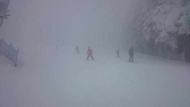 Zieleniec Ski Arena - Na brak śniegu nie można narzekać jednak mgła drastyczne ogranicza widoczność i pogarsza ogólną sytuację.  - © SivvSoon