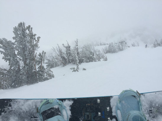 Mt. Rose - Ski Tahoe - A lot of fresh powder - © Cabs