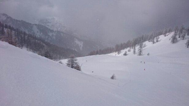 Bardonecchia - Domenica e lunedì nevicava e quindi la neve fresca ci ha fatto divertire tantissimo in mezzo ai boschi, soprattutto lungo la sciovia Bosco!  - © Bellissimo In Pista E No