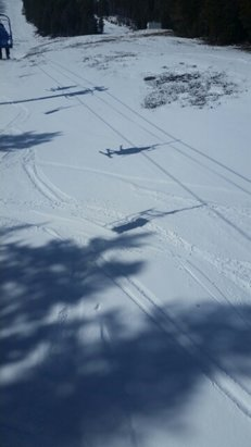 Castle Mountain - great day @ castle. lots of fresh pow to b had  - © jeffP