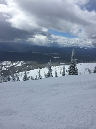 Whitefish Mountain Resort - Conditions are great thanks to new snow and really good visibility. Awesome mountain and nice people and staff - © Brian's iPhone