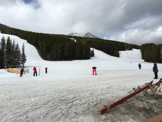 Nakiska Ski Area - Pretty good spring skiing conditions -empty runs despite spring break!  - ©Joy iPhone