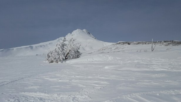 Mt. Hood Meadows - Epic day back in February, wish I could be back there! - ©nick68620