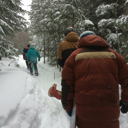 Le Massif - Heavy traffic while hiking into the glades, no worries though there's plenty of snow to go around. - © iPhone