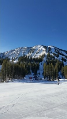 Mt. Rose - Ski Tahoe - Full groom,pure nevada sun,brewski at WCL - ©sevenofnevada