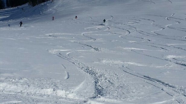 Alta Ski Area - Tasty fresh stuff on ballroom and Devils castle this am : ).  gorgeous day - © andre