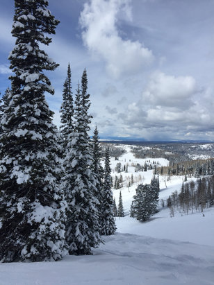 Grand Targhee Resort - Amazing sunny day !! Powder , powder, powder !!! Spectacular! - © Claudia's iPhone
