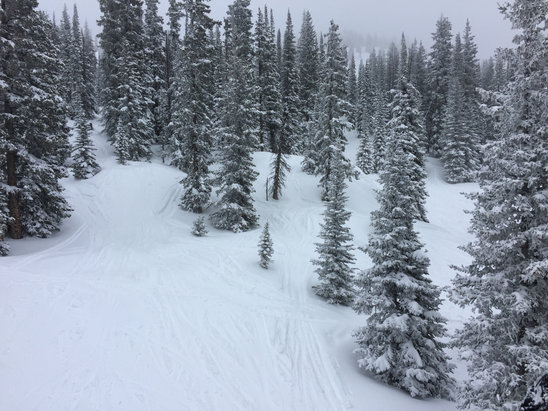 Steamboat - Morningside powder has been awesome! - © iPhone