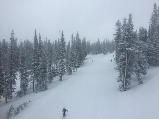 Winter Park Resort - Powder for 2 days now.  Fantastic skiing.  - ©SPEDDING.IP's iPhone