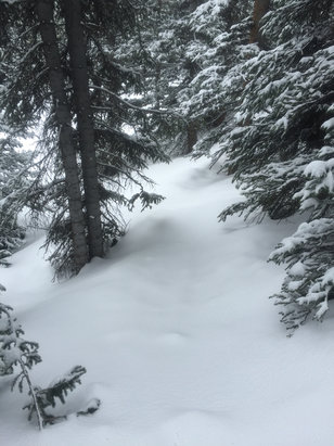 Winter Park Resort - Excellent POW day today at MJ. Found fresh snow all day. Not very many skiers. Pano opened at about noon.  - ©Tom's IPhone