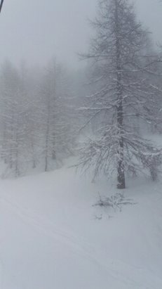 Bardonecchia - Nevica da lunedi  - © doggy