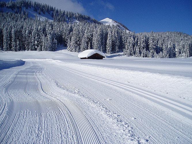Das Skigebiet Postalm Wolfgangsee - © Postalm Wolfgangsee