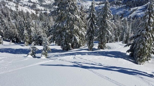 Squaw Valley - Alpine Meadows - Awsome Day! - ©Skier